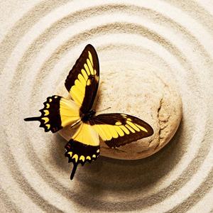 Essere Ordinario, Osho, Miracolo, L'interferenza della Mente