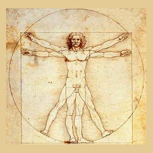 Centri dell'essere umano, Maurice Nicoll, Quarta Via, Osservazione,